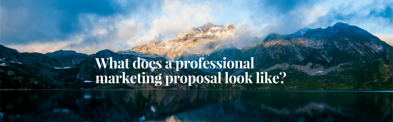 What does a professional website development proposal look like?